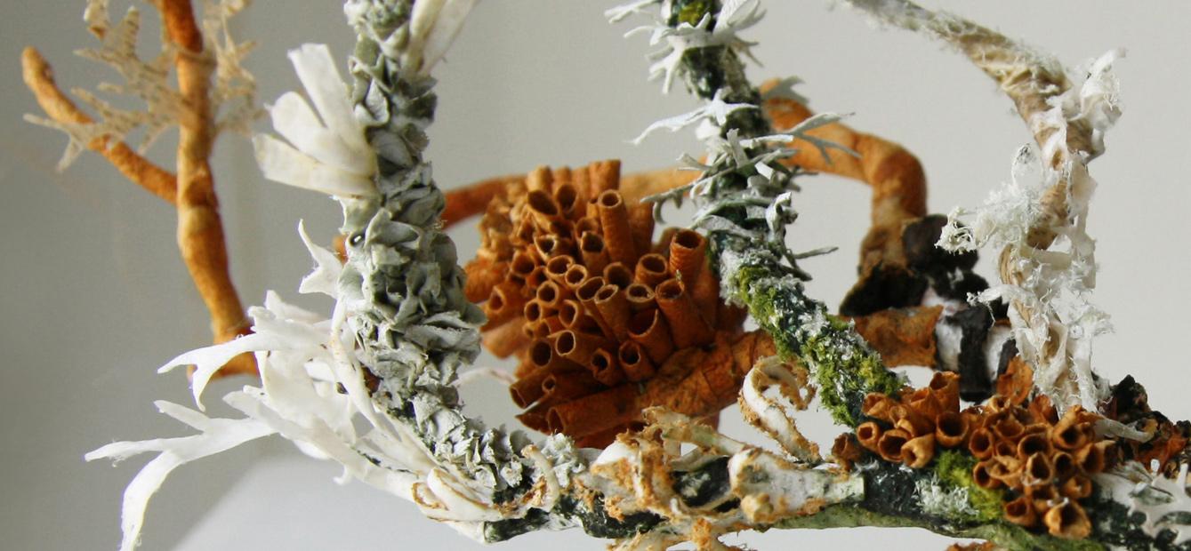 Exibição: Laura - Contemporary Applied Arts